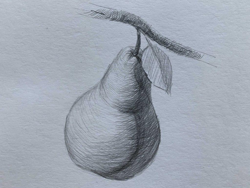 Как нарисовать грушу на ветке 3 этап - фото