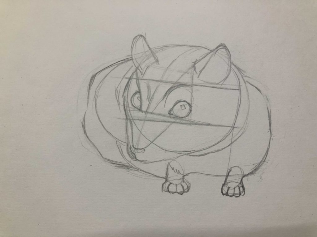 Как нарисовать карандашом хомячка - джунгарский 2 этап - фото