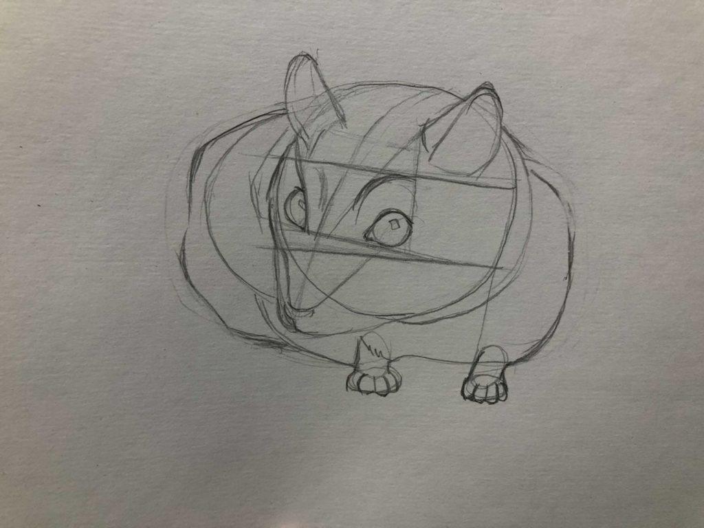 Как нарисовать карандашом хомячка - джунгарский 3 этап - фото