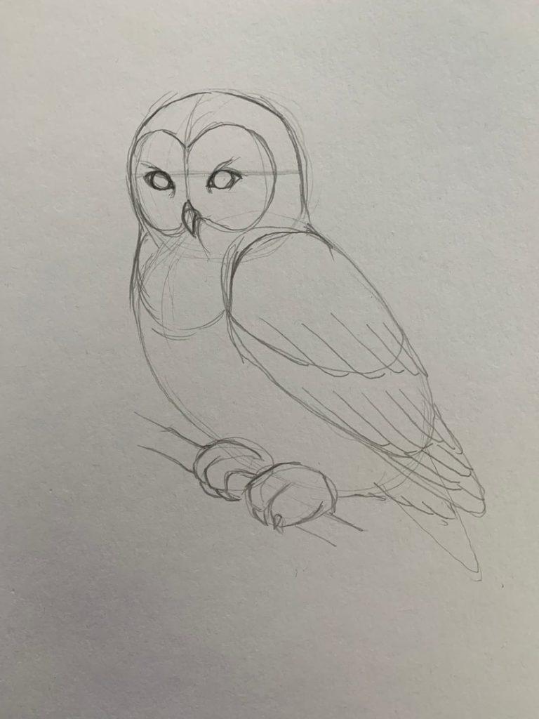 Как нарисовать карандашом сову на ветке 2 этап - фото