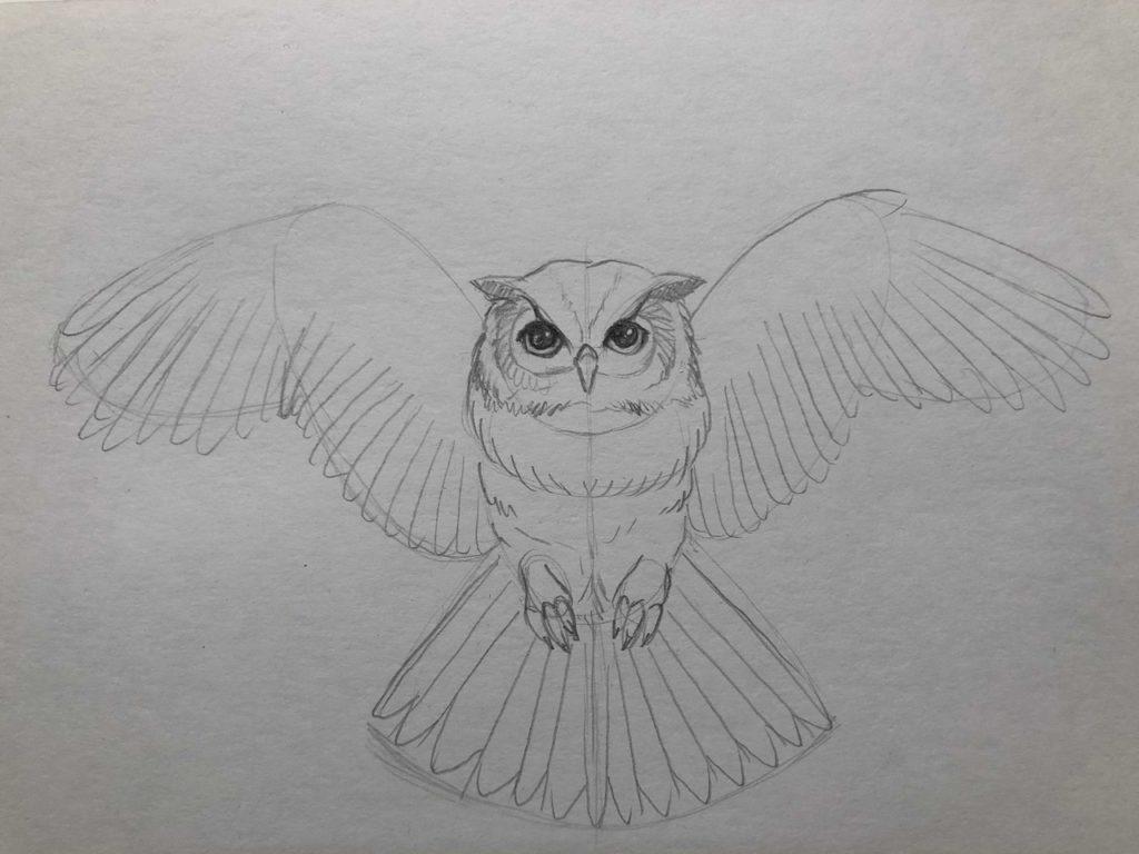 Как нарисовать карандашом сову с расправленными крыльями 4 этап - фото