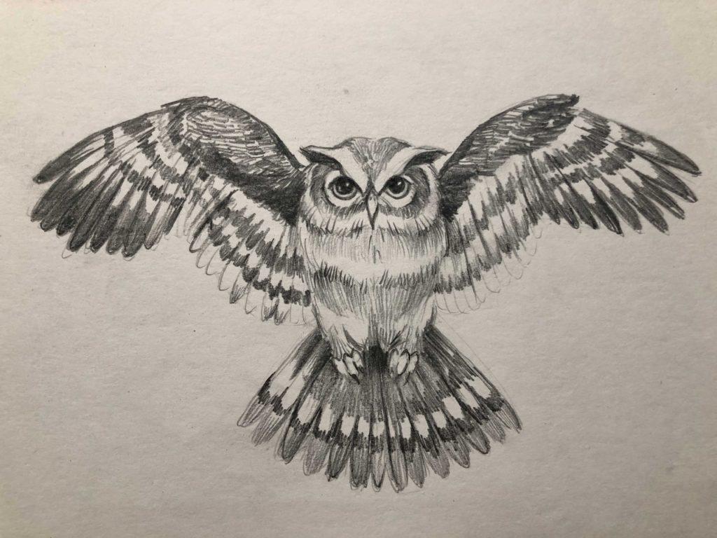 Как нарисовать карандашом сову с расправленными крыльями 5.2 этап - фото
