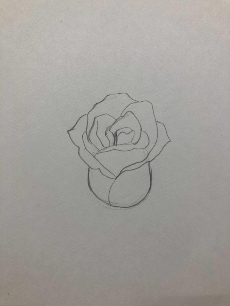 Как научиться рисовать карандашом - роза 2 этап - фото