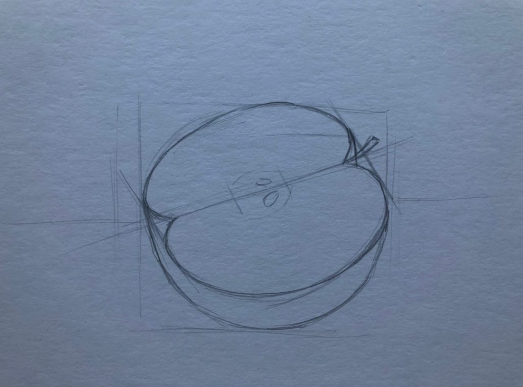 Рисуем яблоко в разрезе 1 этап - фото
