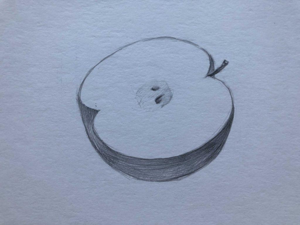 Рисуем яблоко в разрезе 2 этап - фото