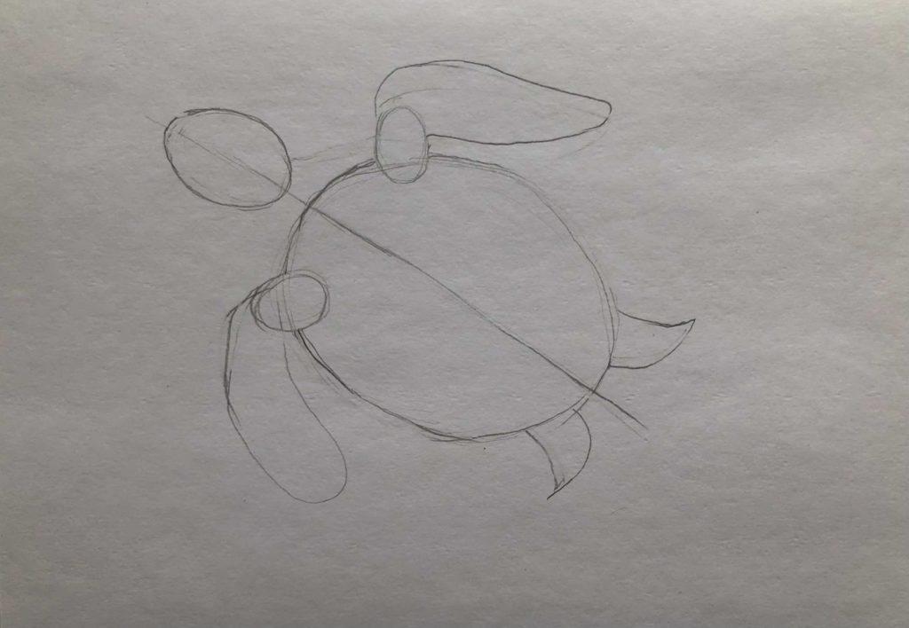 Как нарисовать карандашом черепаху поэтапно - 1 этап черепаха в воде - фото
