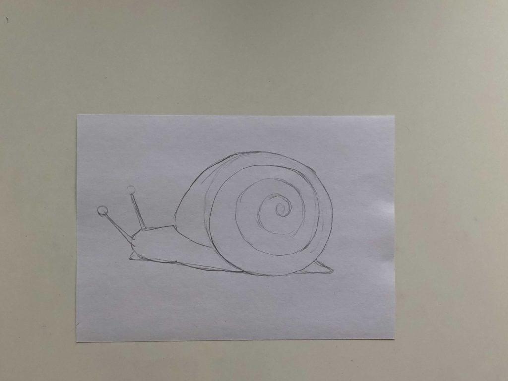 Как нарисовать простую улитку карандашом поэтапно - 1 этап