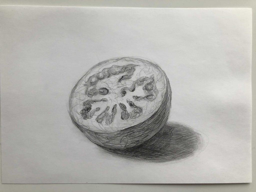 Как поэтапно нарисовать карандашом томат - в разрезе 3 этап - фото