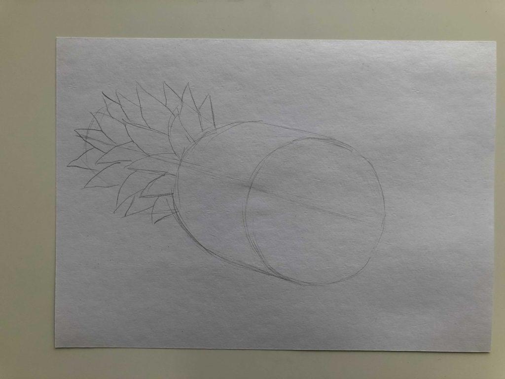 Как нарисовать ананас карандашом поэтапно - ананас в разрезе 1 этап - фото