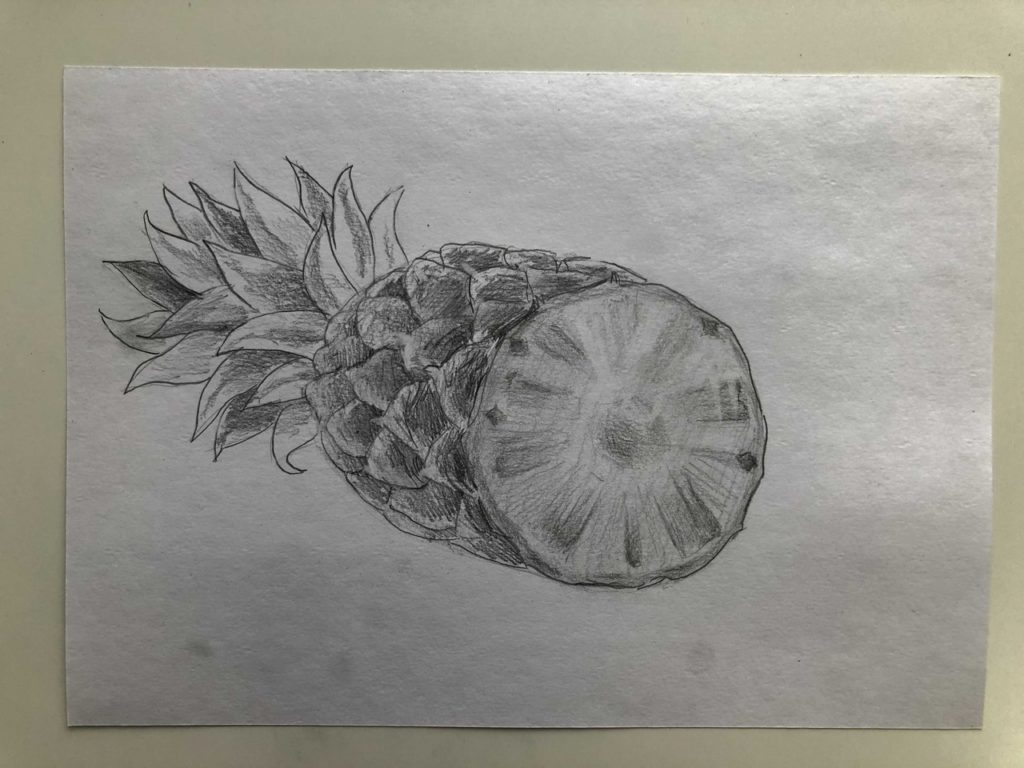 Как нарисовать ананас карандашом поэтапно - ананас в разрезе 5 этап - фото