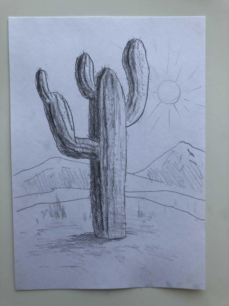 Как нарисовать кактус карандашом поэтапно - кактус в пустыне 3 этап - фото