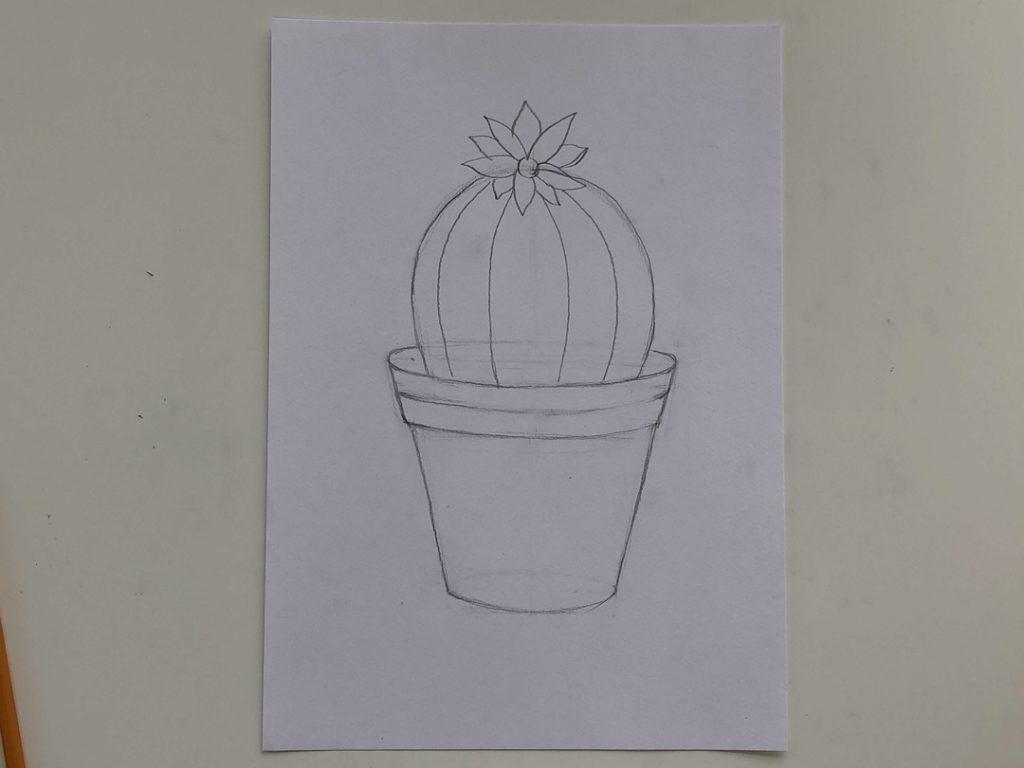 Как нарисовать кактус карандашом поэтапно - простой кактус 2 этап - фото