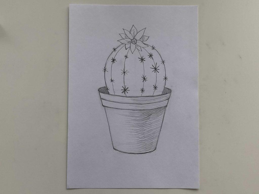 Как нарисовать кактус карандашом поэтапно - простой кактус 3 этап - фото