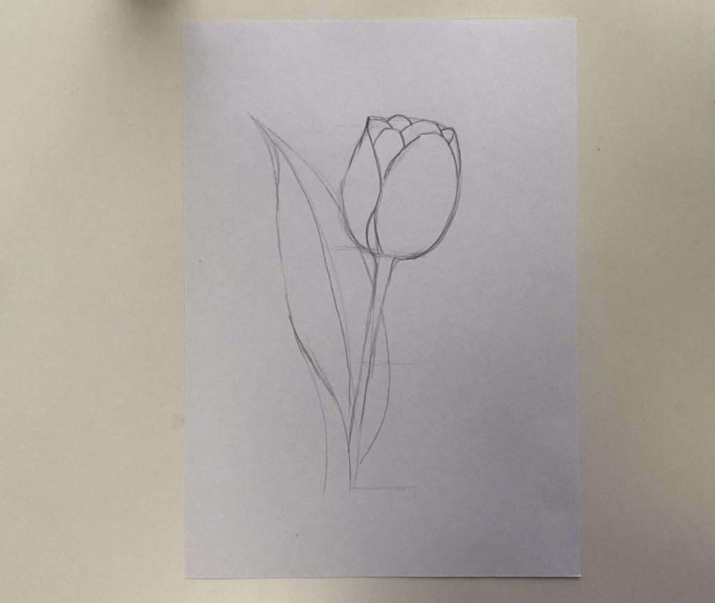 Как нарисовать тюльпан легко и быстро - простой тюльпан 1 этап - фото