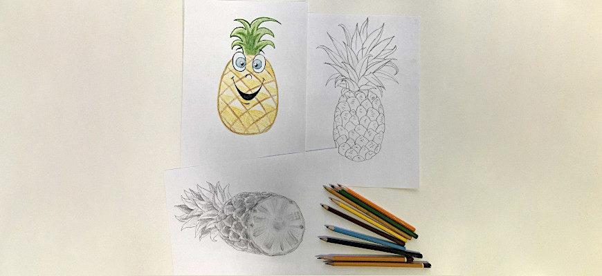 Как поэтапно нарисовать карандашом ананас - фото