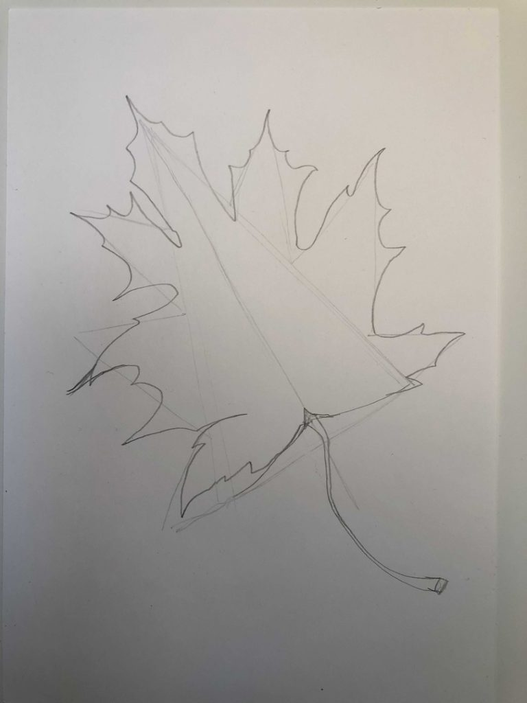 Листик клена рисунок карандашом - продвинутый лист 2 этап - фото