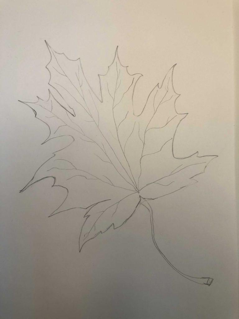 Листик клена рисунок карандашом - продвинутый лист 3 этап - фото