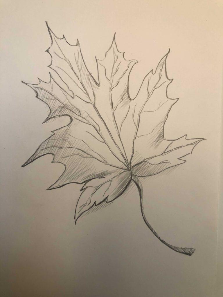 Листик клена рисунок карандашом - продвинутый лист 4 этап - фото