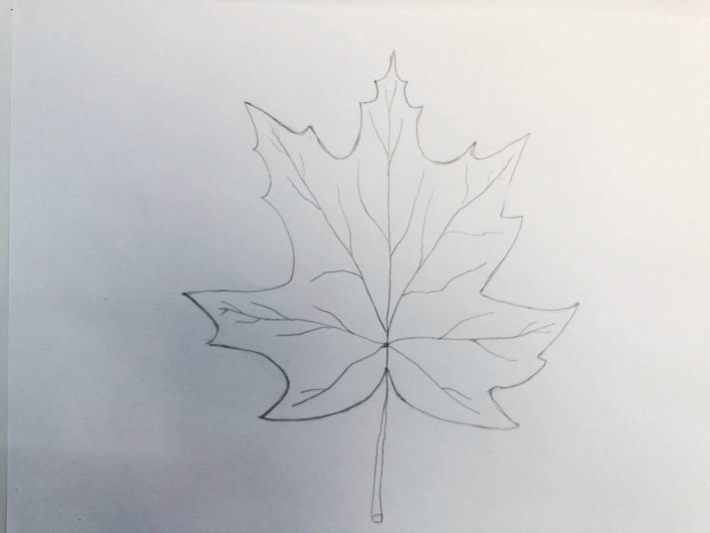 Листик клена рисунок карандашом - простой лист 3 этап - фото