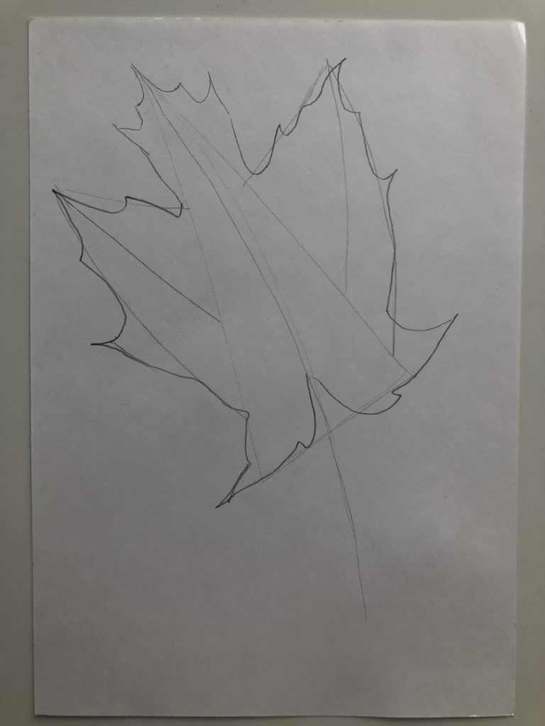 Листик клена рисунок карандашом - цветной лист 2 этап - фото