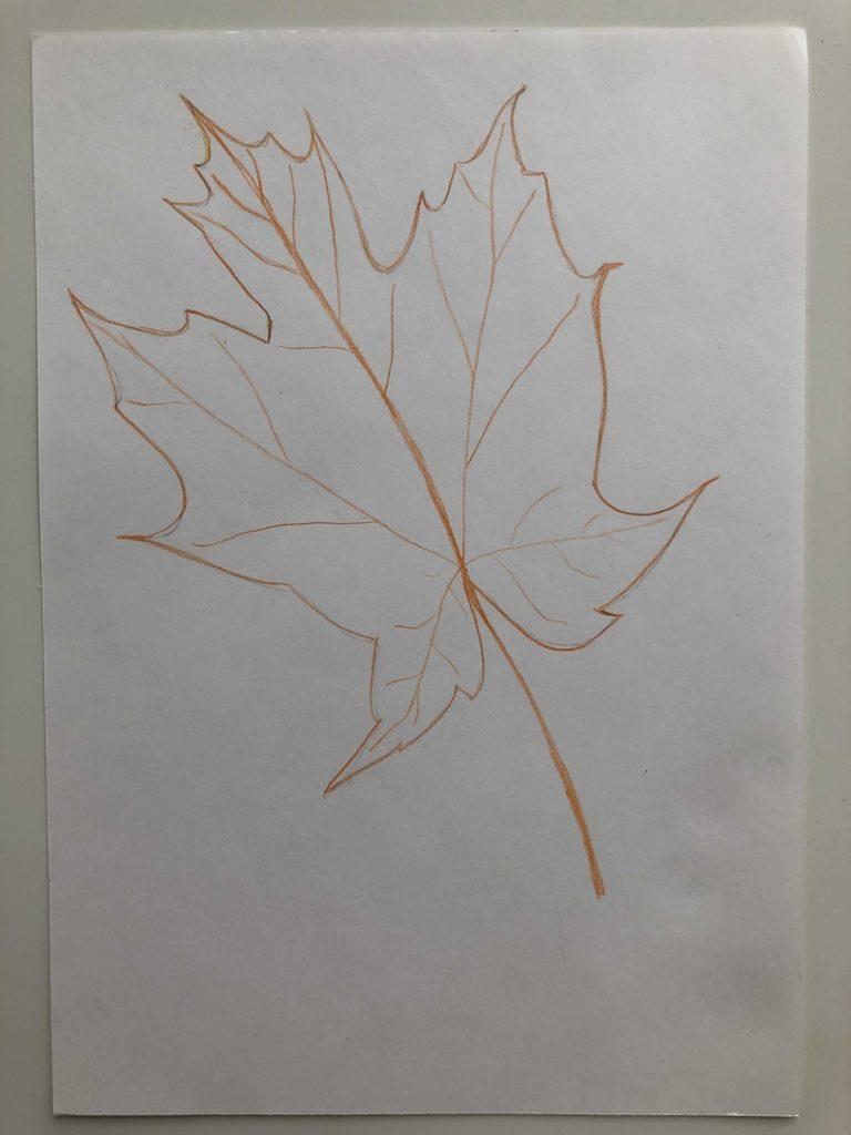 Листик клена рисунок карандашом - цветной лист 3 этап - фото