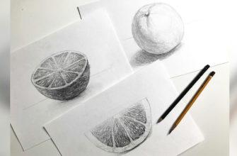 Как нарисовать апельсин карандашом поэтапно - фото