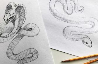 Как нарисовать змею карандашом поэтапно - фото