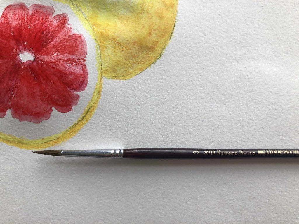 Как рисовать акварельными карандашами - кисть для акварели - фото