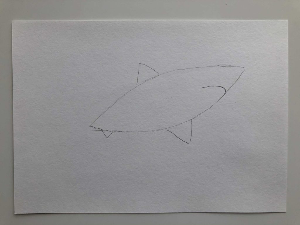 Как нарисовать акулу карандашом поэтапно - белая акула 1 этап - фото