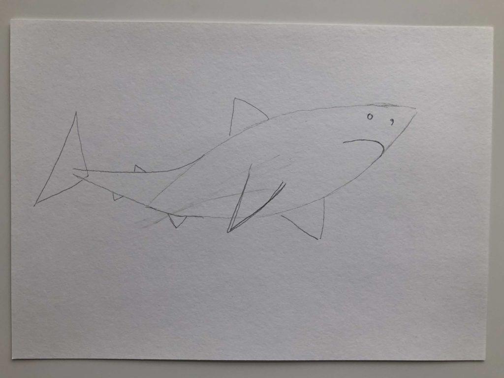 Как нарисовать акулу карандашом поэтапно - белая акула 2 этап - фото