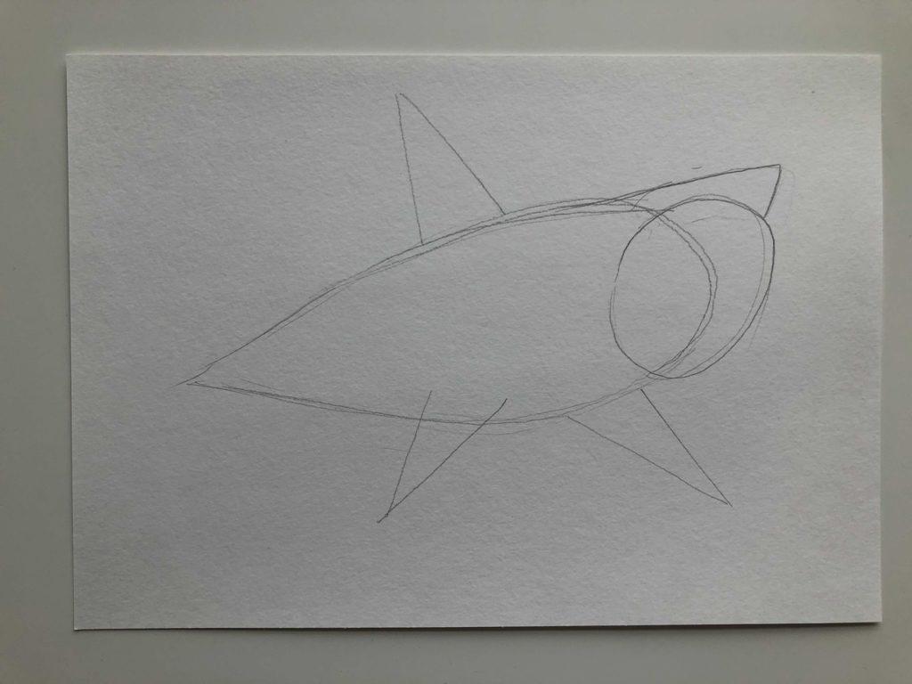 Как нарисовать акулу карандашом поэтапно - тигровая 1 этап - фото