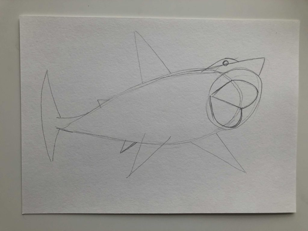 Как нарисовать акулу карандашом поэтапно - тигровая 2 этап - фото