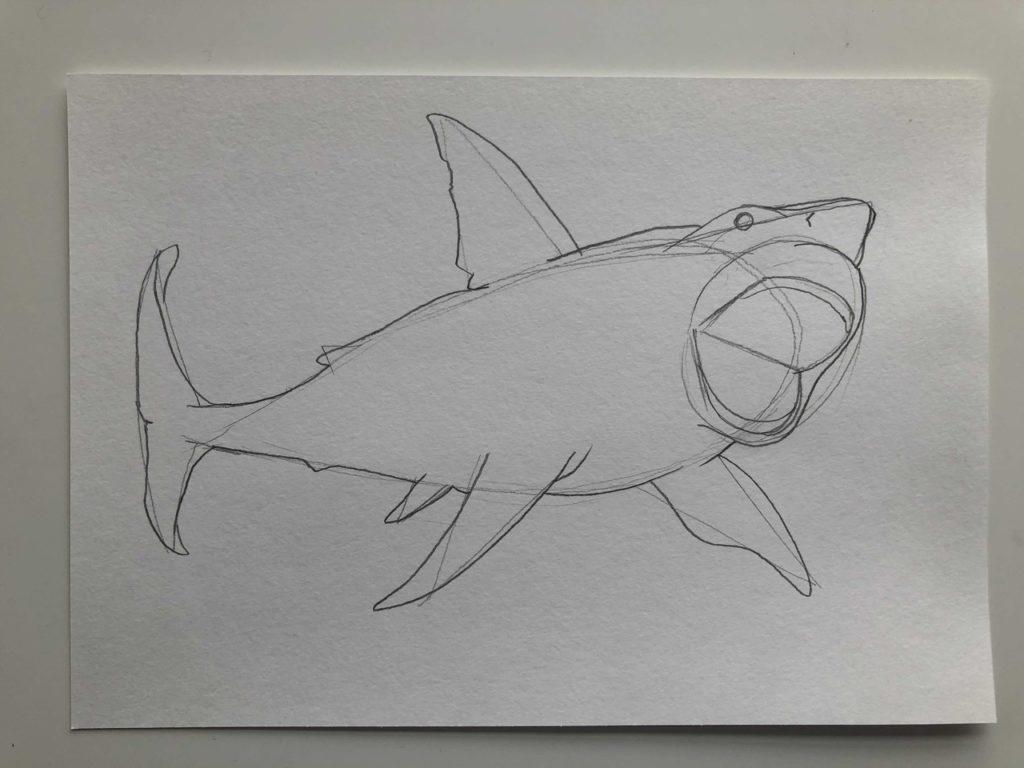 Как нарисовать акулу карандашом поэтапно - тигровая 3 этап - фото