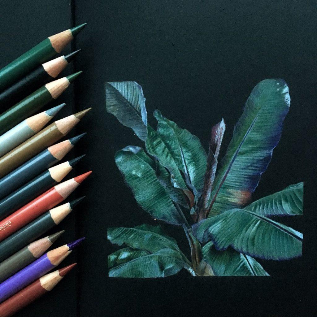 Как и чем рисуют на черной бумаге - цветные карандаши - фото