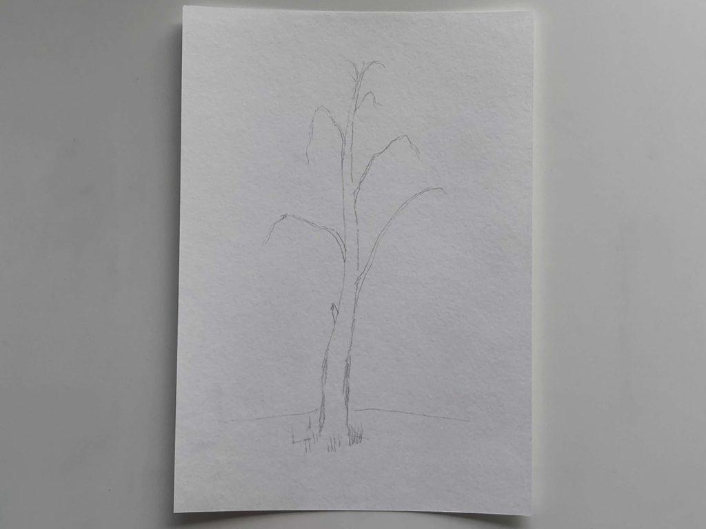 Самый простой способ нарисовать березу - 1 этап - фото