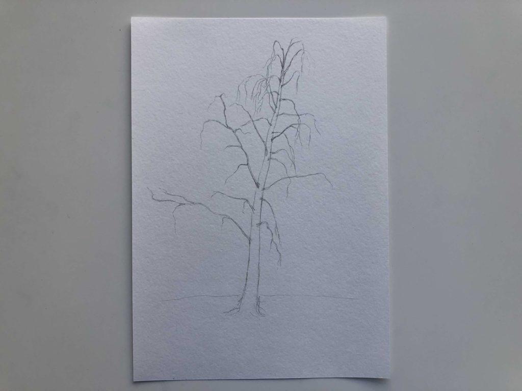 Как нарисовать зимнюю березу - 1 этап - фото