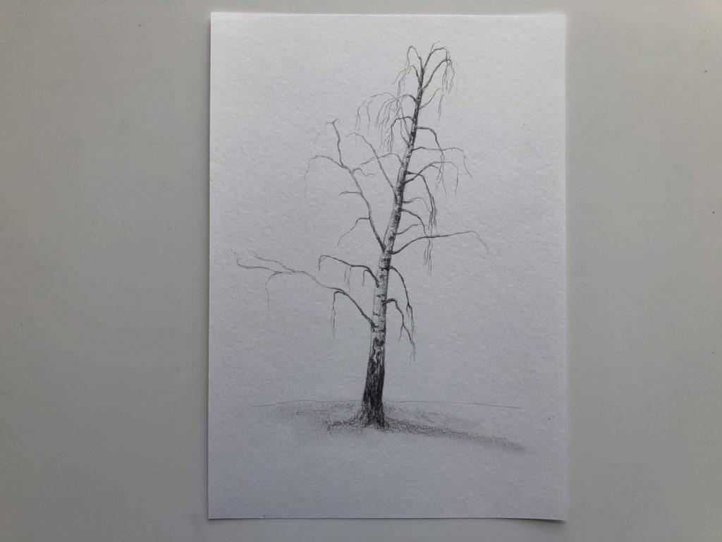 Как нарисовать зимнюю березу - 2 этап - фото