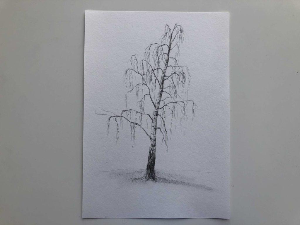 Как нарисовать зимнюю березу - 3 этап - фото