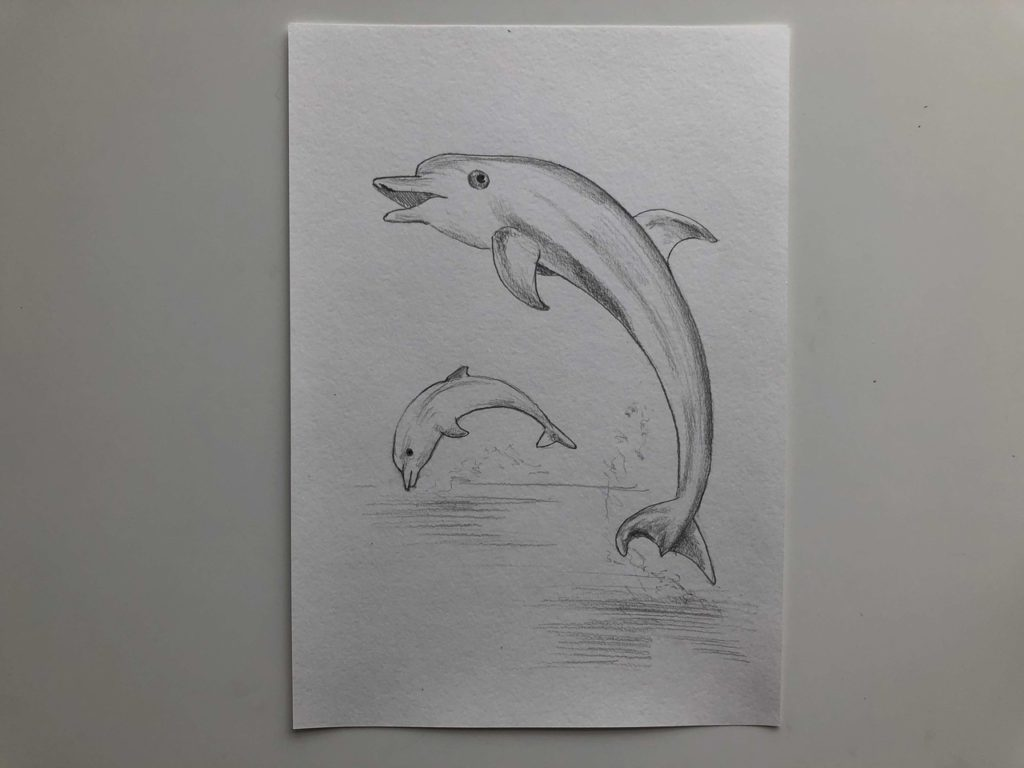 Как нарисовать двух дельфинов - 3 этап - фото