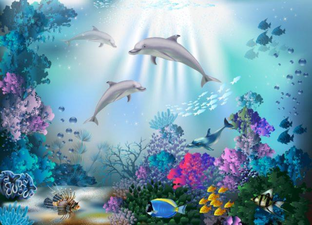 Идеи с фото для рисования дельфина - подводный мир - фото