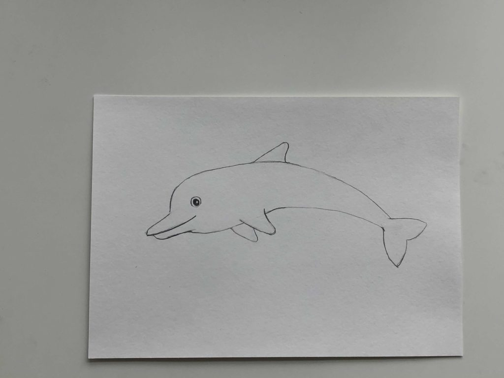 Простой способ нарисовать дельфина - 3 этап - фото