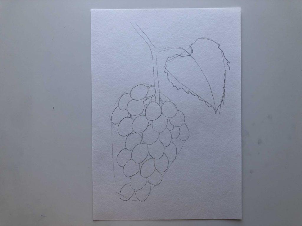 Как нарисовать виноград карандашом - лоза - 2 этап