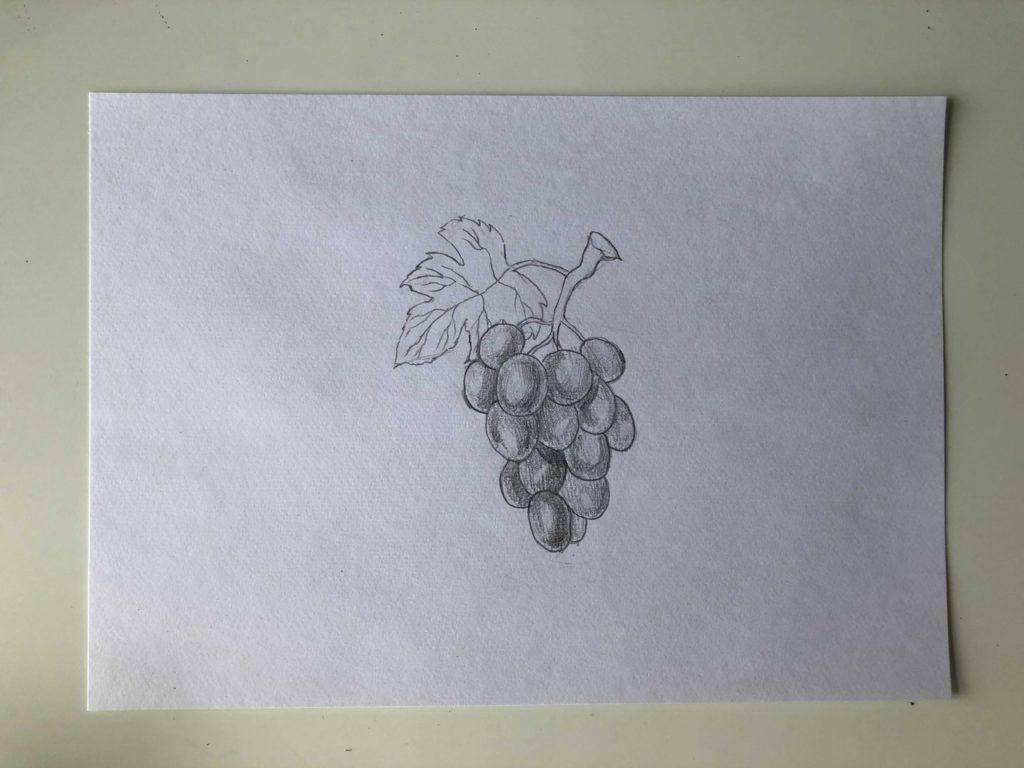 Как нарисовать виноград карандашом - простой способ - 3 этап
